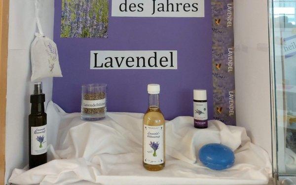 Lavendelzauber liegt in der Luft